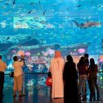 Самый большой аквариум в мире - Dubai MAll