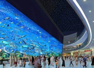 Dubai Mall (Дубай Молл)