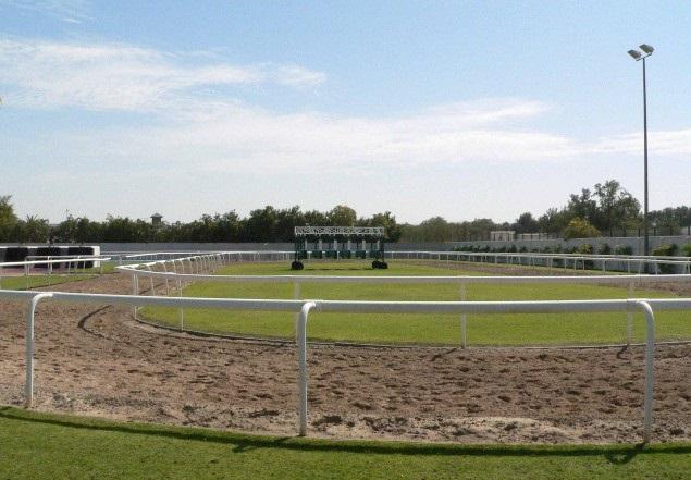 тренировочный круг, конюшни Дубая