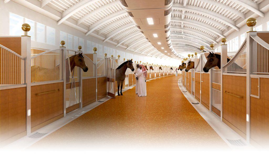 конюшни в Дубае