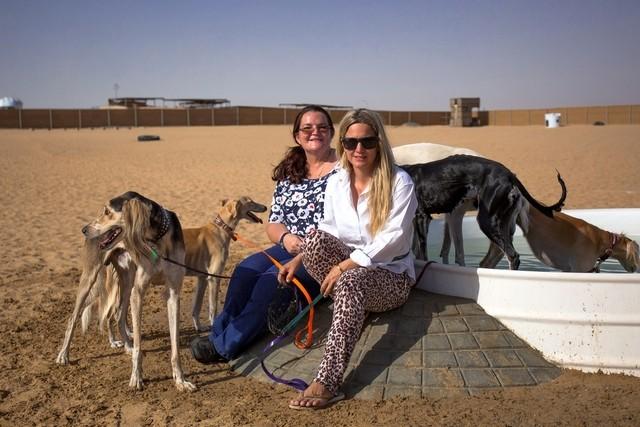 Парк собак в Дубае