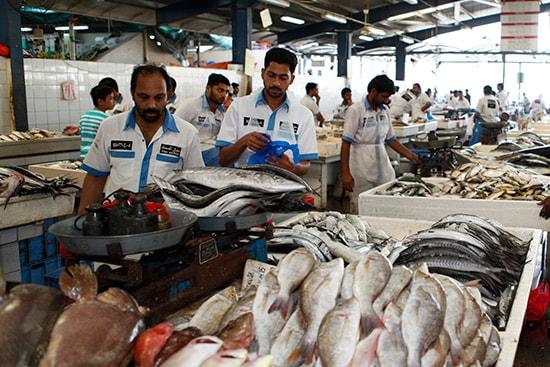 Рыбный рынок в Дубаи