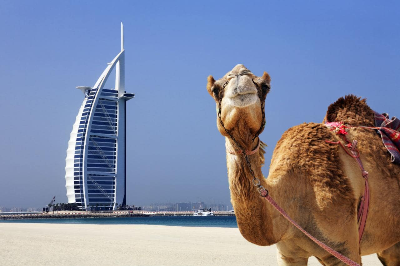 Памятка туристу в Дубае